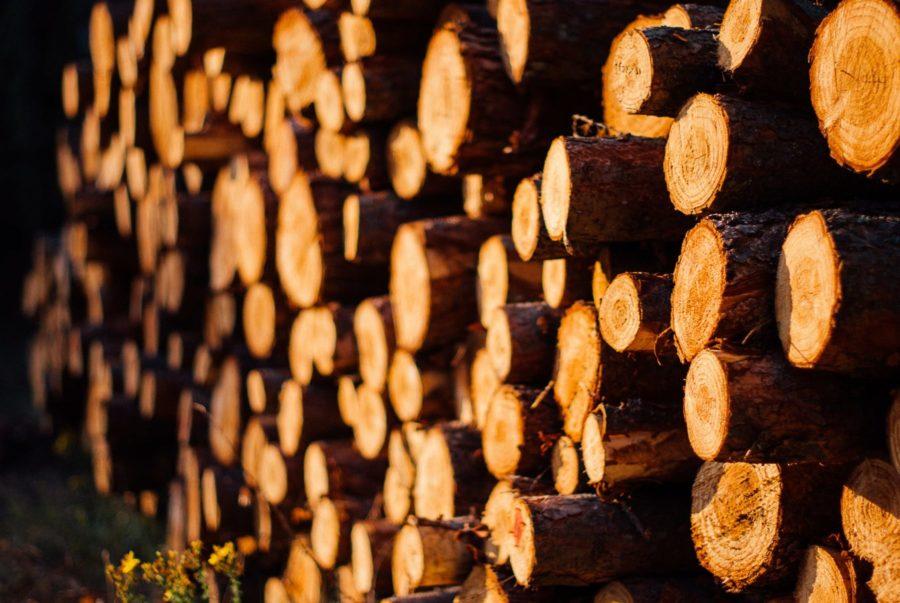 wood-utilization